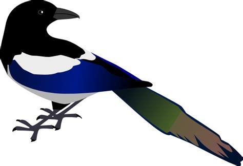 magpie clip art at clker com vector clip art online