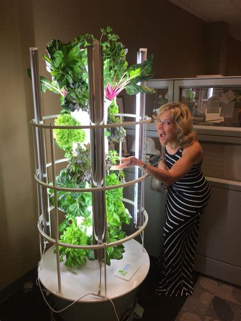 grow year   indoor growing tower garden