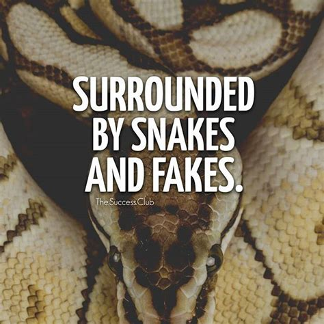 Snake Quotes the 25 best snake quotes ideas on quotes