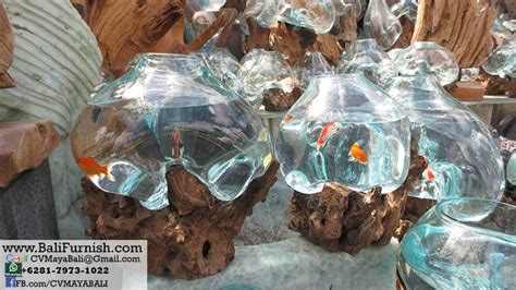 GLS1 1 Root Sculptures with Glass Bowls