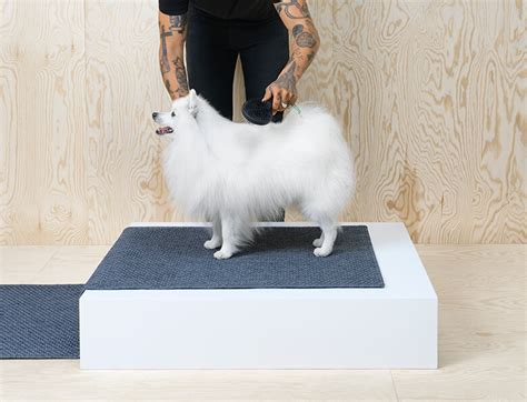 ikea dogs ikea rolls out modern furniture line for dogs and cats
