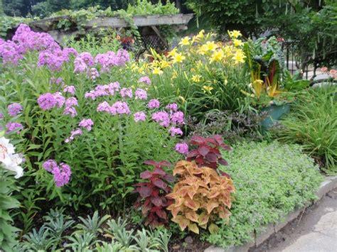Perennials Flower Beds Borders Pinterest How To Plant A Flower Garden