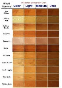 wood color paint 25 best ideas about wood colors on stains for
