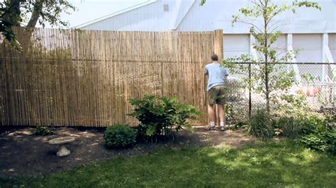 Backyard Bamboo Fencing by Installing A Bamboo Friendly Fence On A Chain Link Fence
