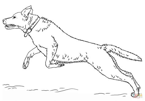 labrador dog coloring page 88 free coloring pages of labrador dogs free pet