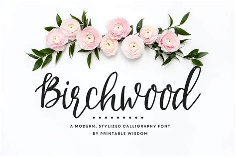 calligraphy font birchwood calligraphy font fonts creative market