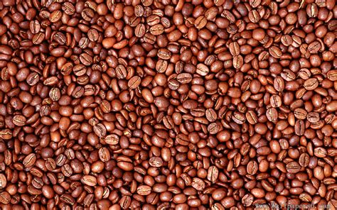 coffee bean wallpaper coffee bean cate wallpapers free download wallpapers
