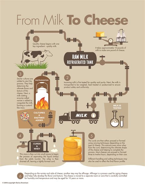 how to make a process diagram swiss american 187 from milk to cheese