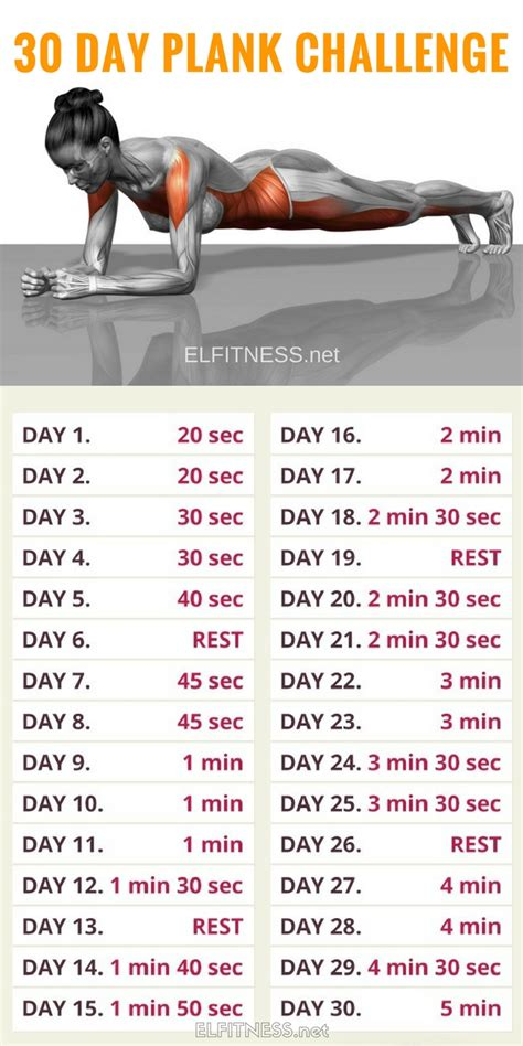 benefits of 30 day challenge 30 day plank challenge and here s what happened