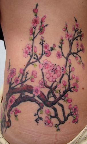 cherry blossom branch tattoo designs cherry blossom branches by reed tattoonow