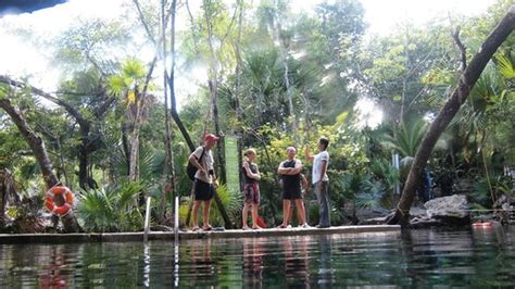chac section 8 chac mool cenote photo de chac mool playa del carmen tripadvisor