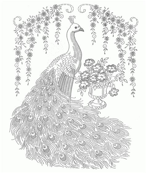 cool coloring pages adults cool coloring pages for adults peacock coloring home