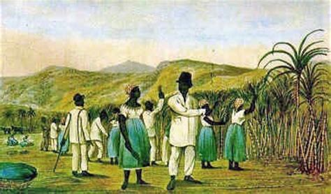 Southern Planters Considered Their Slaves To Be by Plantations