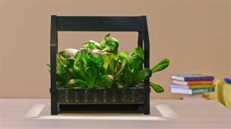 il genio della lada il kit per il giardinaggio indoor di ikea per coltivare