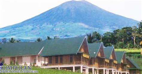 Benalu Kopi Segar menikmati pesona haran kebun teh gunung dempo pagar alam