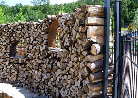 vorschläge für gartengestaltung zaun pflanzen idee