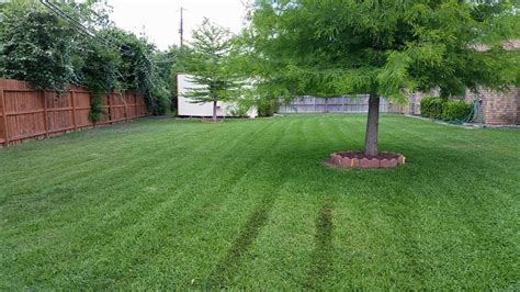lawn maintenance smith landscaping