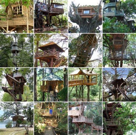 custom build a house custom tree house plans diy ideas building designs