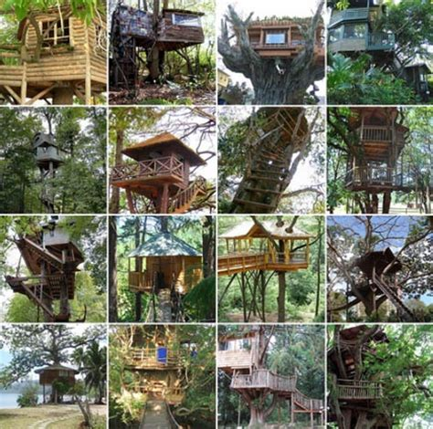 ideas for building a house custom tree house plans diy ideas building designs