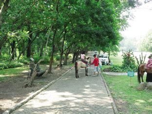 Bibit Buahtanaman Jadi Dewandaru wisata flora di kebun raya purwodadi wisata jawa