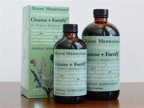 Elderberry Detox by Gentle Detox Tonic By Maine Medicinals The Grommet