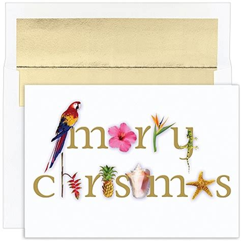 tropical cards everything tropical merry 18 boxed