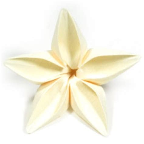 Pattern For Butterfly Jasmine Paper Flower   how to make an origami jasmine flower page 18