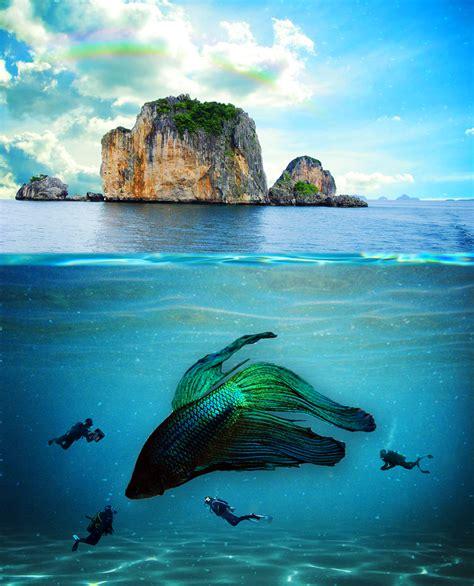 underwater tutorial photoshop cs5 underwater scene photomanipulation by legendaryrey on