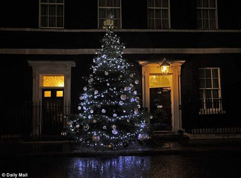 number 10 workers hang lights on tree outside david