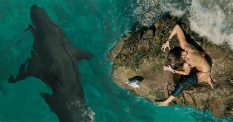 The Shallows the shallows 2016 review thatmomentin
