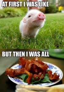 Piglet Meme - a meme i made i know i m a horrible person what can i