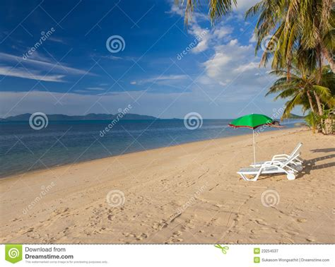 Bench On The Beach Royalty Free Stock Photography Image 23254537