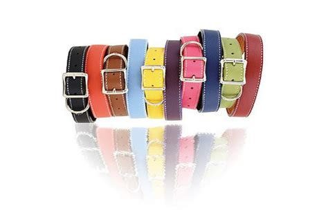 most comfortable collars uk luxury designer collars for large and small dogs