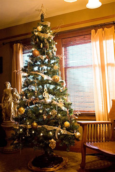 tree bedroom welcome to the riggio s parade of trees connie riggio seattle tacoma photographer
