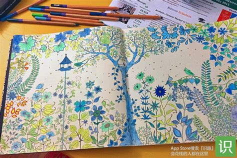 Where Can I Get Coloring Books 人涂色书 秘密图片 by Where Can I Get Coloring Books