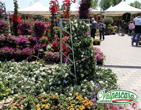 vendita piante e fiori pescara valpescara garden
