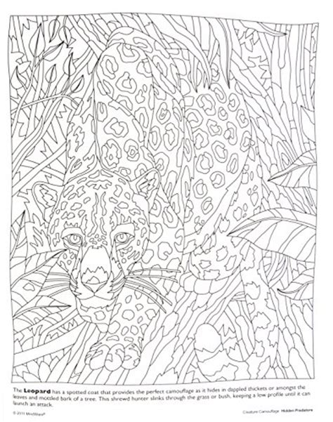 camouflaged animals coloring info pages allaboutnature com coloring pages camouflage animals cartoon animals