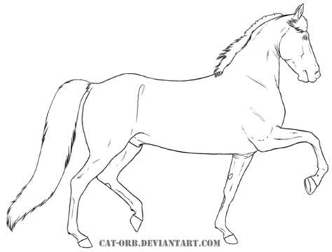 morgan horse coloring page morgan coloring page free printable coloring pages