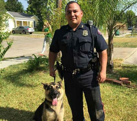 dog house pasadena dog trapped under house rescued by pasadena police abc13 com