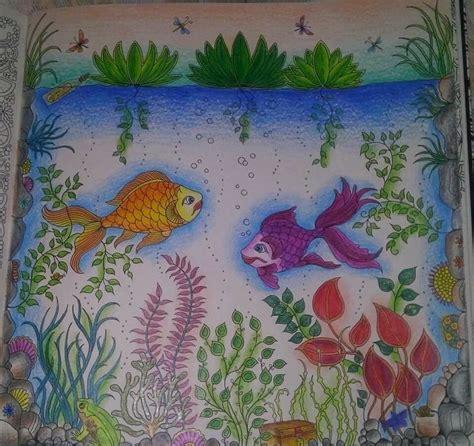 secret garden colouring book fishpond 26 best images about fish secret garden peixe jardim