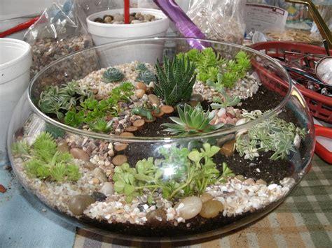 Dijamin Garden Mini Plant Mini Garden diana s garden my mini garden s