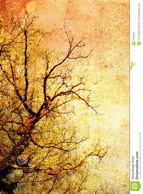 vintage tree vintage tree royalty free stock image image 3190506