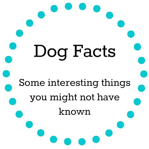 facts about dogs and puppies facts
