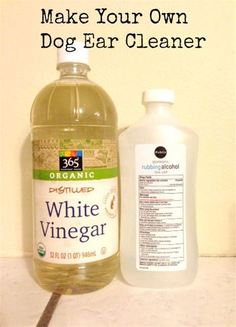 is vinegar bad for dogs 25 best ideas about ear cleaner on cleaning dogs ears ear wash