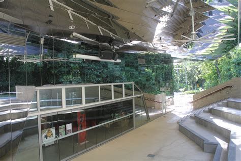 Mba Cairns by Cairns Botanic Gardens Visitor Centre Built On Experience