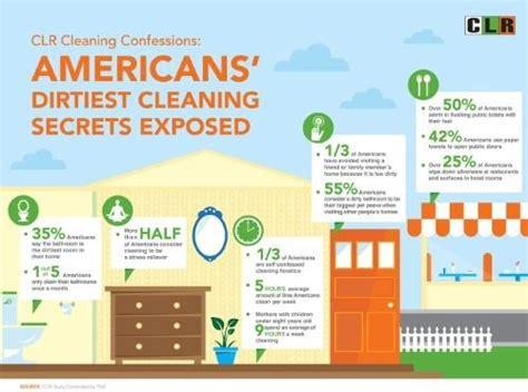 get the house cleaning system here secret confessions of a clean freak america s dirtiest cleaning secrets and habits exposed