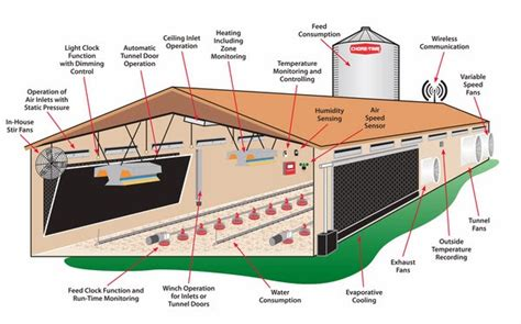 chicken layers house design commercial poultry layers house design chicken coop design ideas