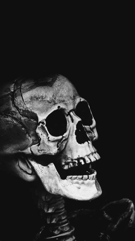 Classic Skull classic skull cell phone background for free