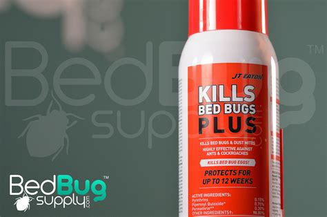 does lysol kill bed bugs jt eaton kills bed bugs plus residual review