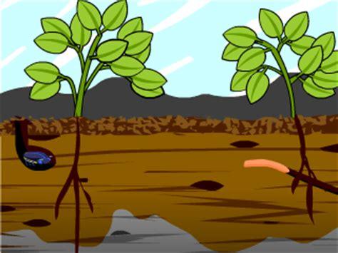 soil lesson plans  lesson ideas brainpop educators